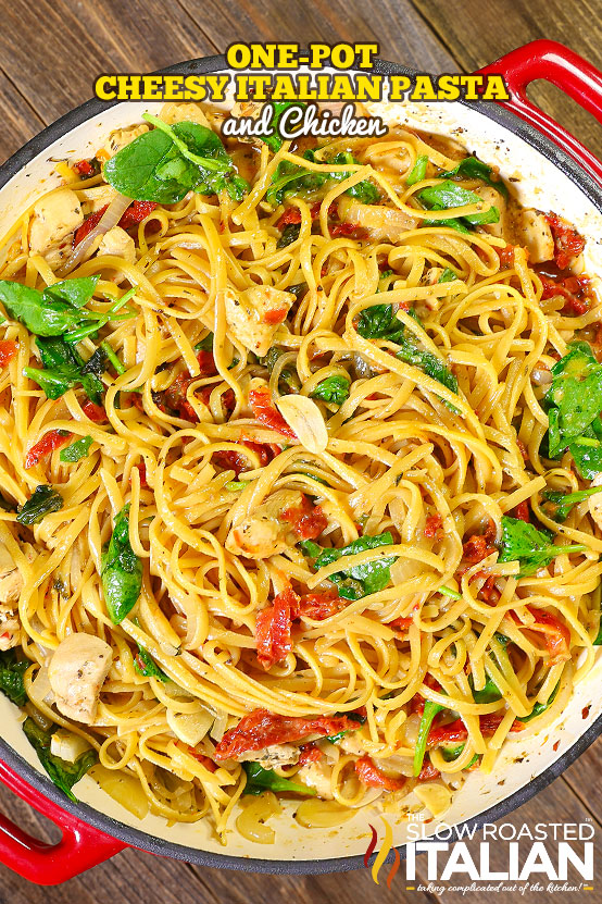 one-pot-cheesy-italian-pasta-and-chicken