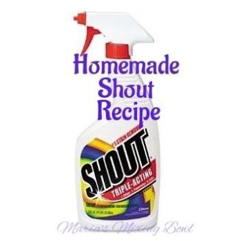 "Homemade ""Shout"" Stain Remover"