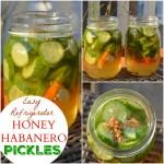 Honey Habanero Pickles