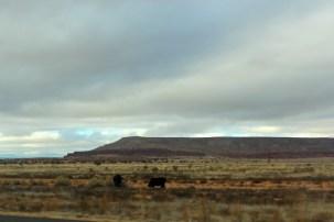 11:28 New Mexico - 11