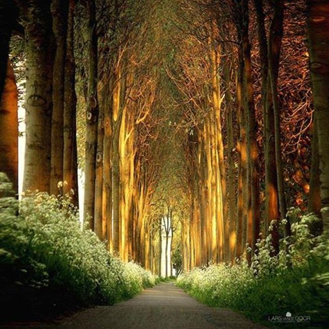 hermosa-natura
