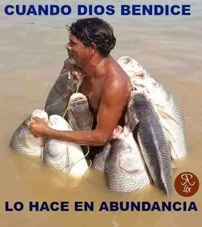 peces-1