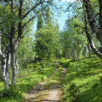 Fjällutflykt ... Mountain hike ...