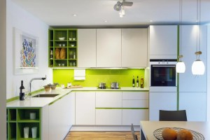 Contemporary Kitchen Design Kitchens with a Pop of Color ...
