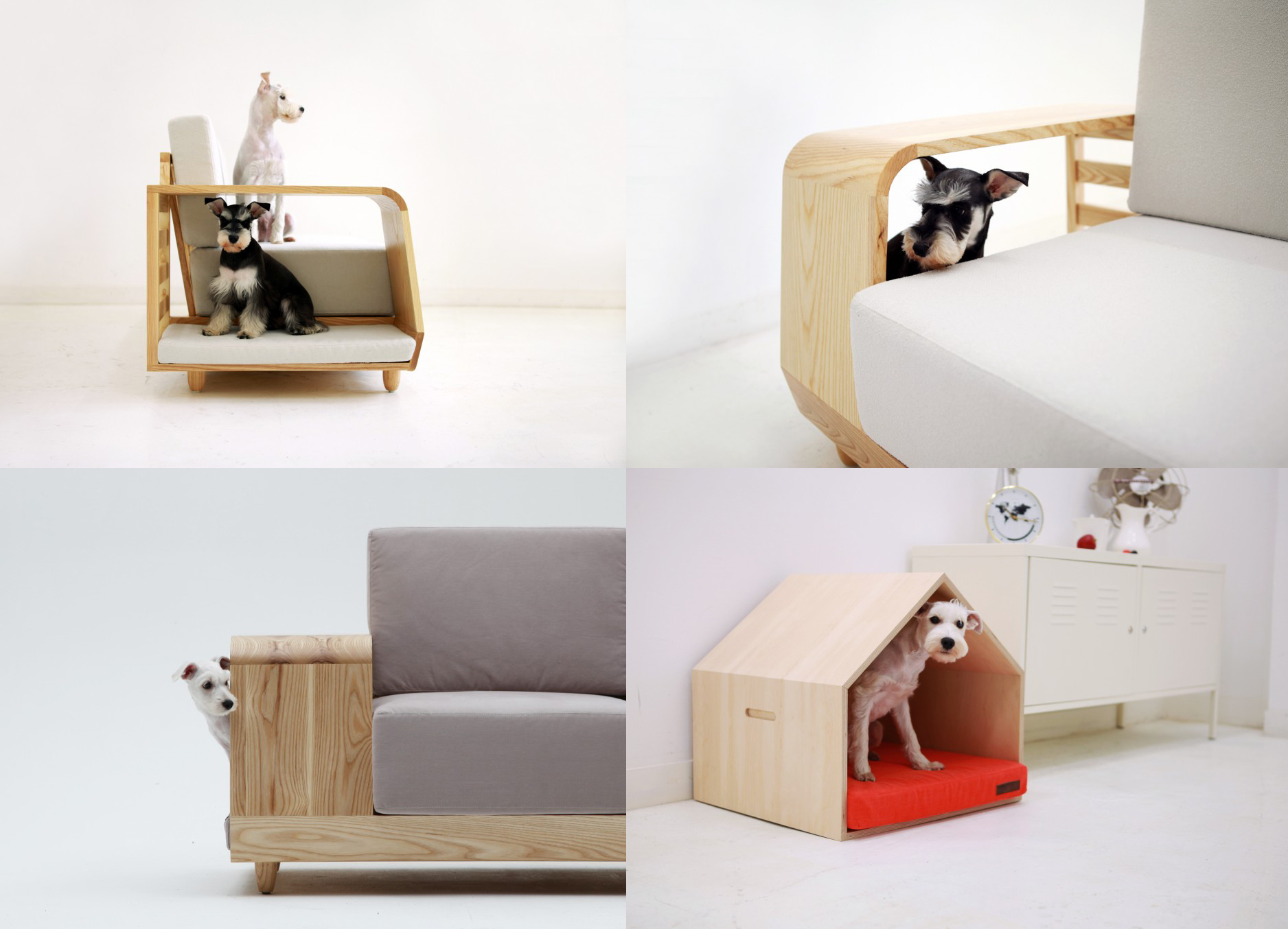 Modern Design Ideas For Our Furry Friends Studio MM Architect