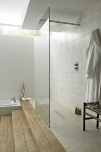 Modern Design Inspiration: Walk Through Showers - Studio ...
