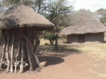 Luo Traditional homestead