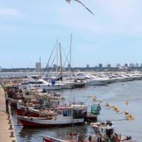 A Ilha Gorriti e o Porto de Punta Del Este