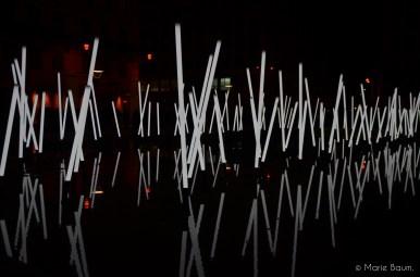 Bamboo, la forêt lumineuse - Place de la République