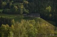 jour7_ferme_colline_route_geiranger_lillehammer