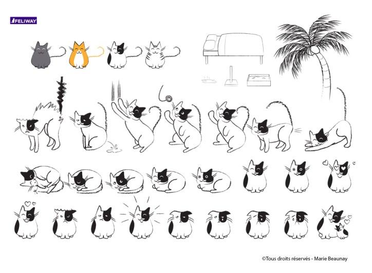 Réalisation d'illustrations destinées à un document pour Feliway