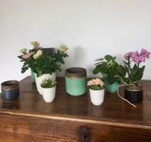 lespots de fleurs