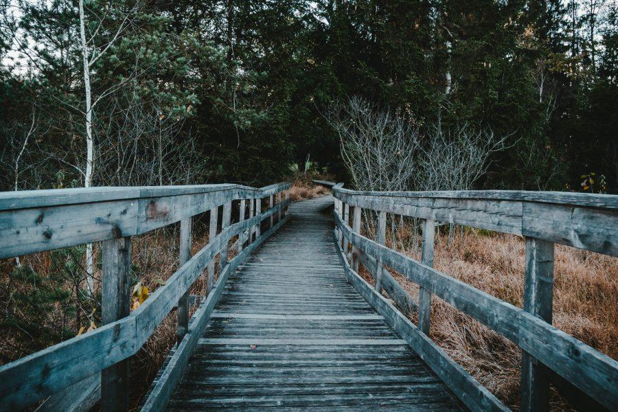 colonisation décolonisation pont
