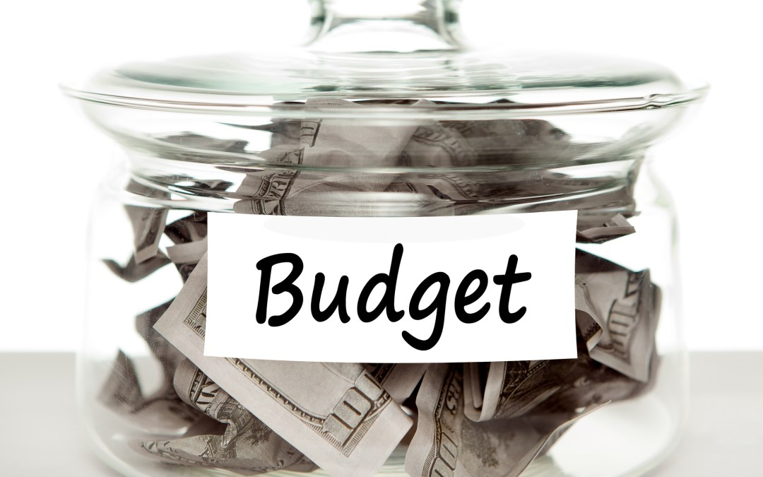 Budget is a Verb: Grow Up and Do It