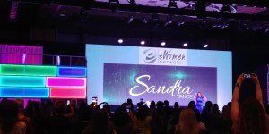 Marie Deveaux's view from the main stage plenary at the 2019 Entrepreneur Women network conference. Sandra Yancey in a blue dress stands on the main stage addressing the crowd with her name in bold on the screen behind her.