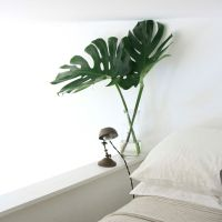 Fresh Air, Fresh Decor - Tips to refresh your decor for Spring!