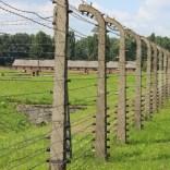 58. Auschwitz bezoeken