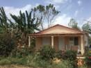 Lush house