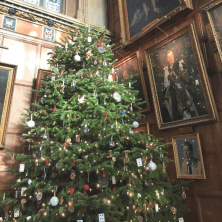 Christmas tree in Christ Church