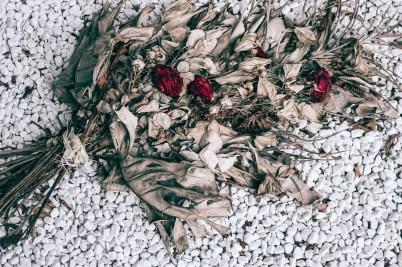 dry bouquet with withered roses on stony ground