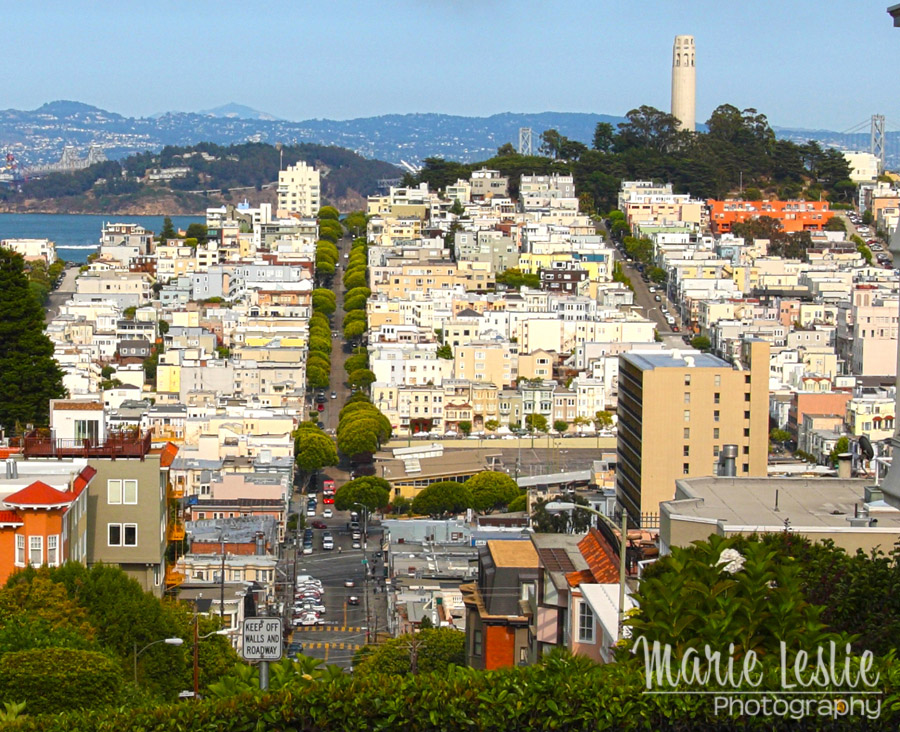 san francisco and coit tower