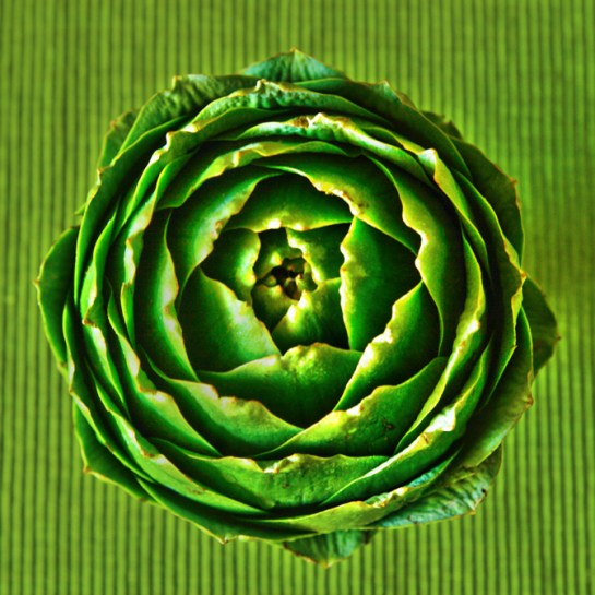 denver food photographer, food photography, artichoke