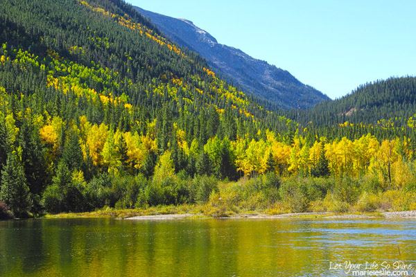 rocky mountain fall color