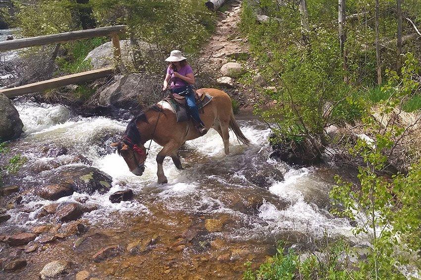 Crossing Fern Creek