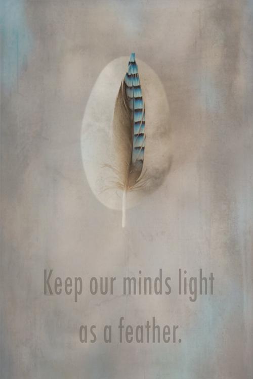 veertje-feather-gedachten-minds-spiritueel