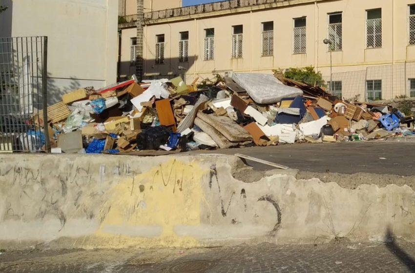 Mercato tra i rifiuti: bisce, blatte e topi non fermano gli ambulanti.