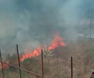 Incendio nel Parco Nazionale del Vesuvio: potrebbe essere doloso