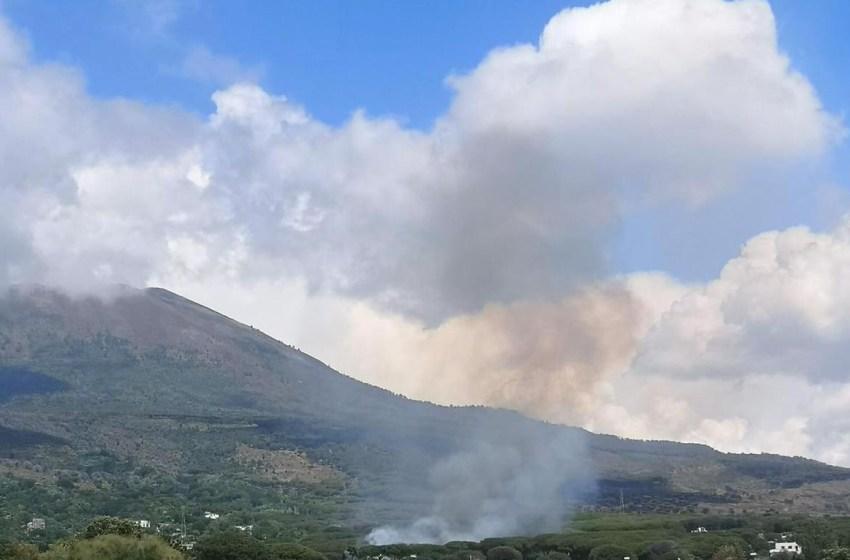 Brucia una pineta. Incendio a pochi metri dalle abitazioni: venti famiglie in allarme