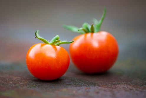 Two home grown tomatoes