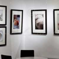 A corner of my Art of Food Photography Exhibition at the TopfotoGallery, Edenbridge