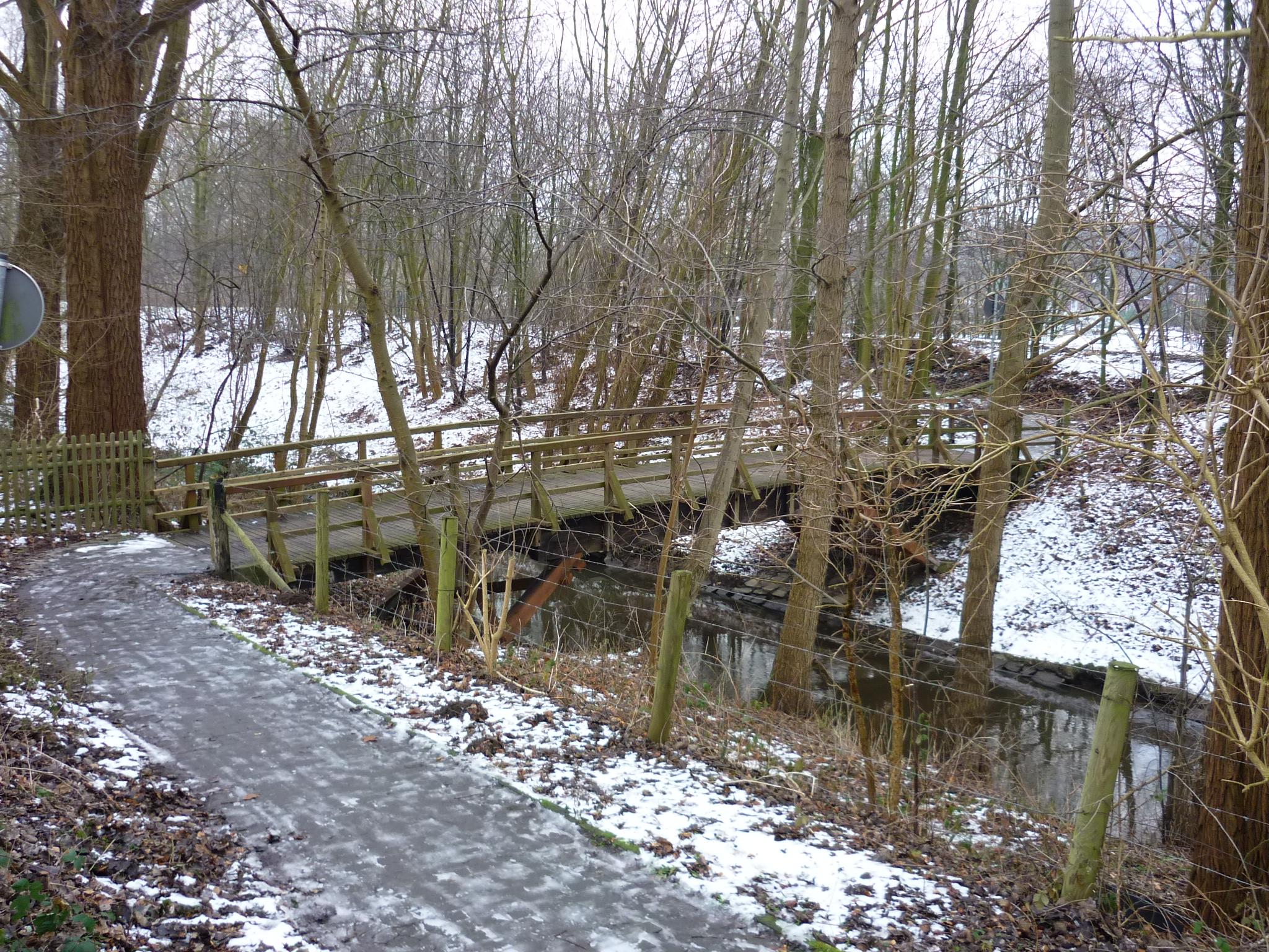 hammbachbruecke-winter-2009-18