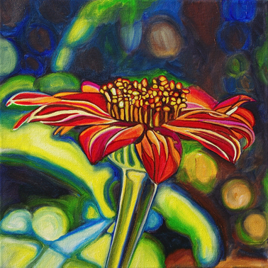 MEXICAN SUNFLOWER • 12 inch x 12 inch oil painting • ©2013 Marie Scott