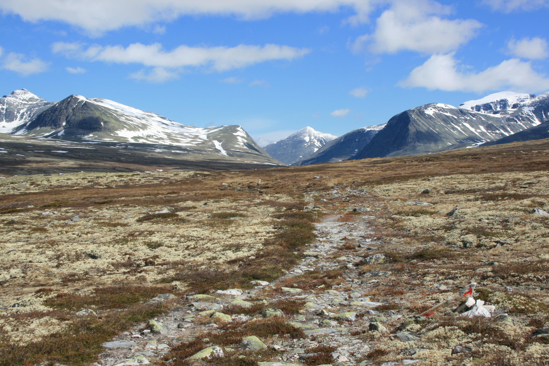 På vei fra Rondvassbu mot Mjølrakkhaugane, med 2000-meterne i bakgrunnen