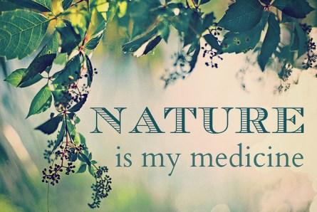 natural-healing-store-marietta