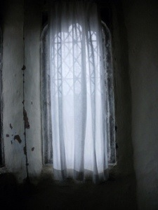 Obscured. Digital photo (unaltered). Mari French.