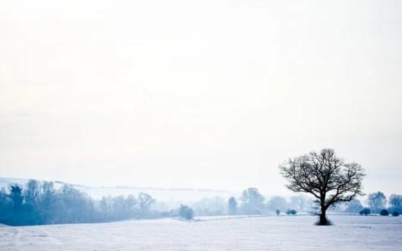 Download: https://interfacelift.com/wallpaper/details/2806/winter_wonderland.html