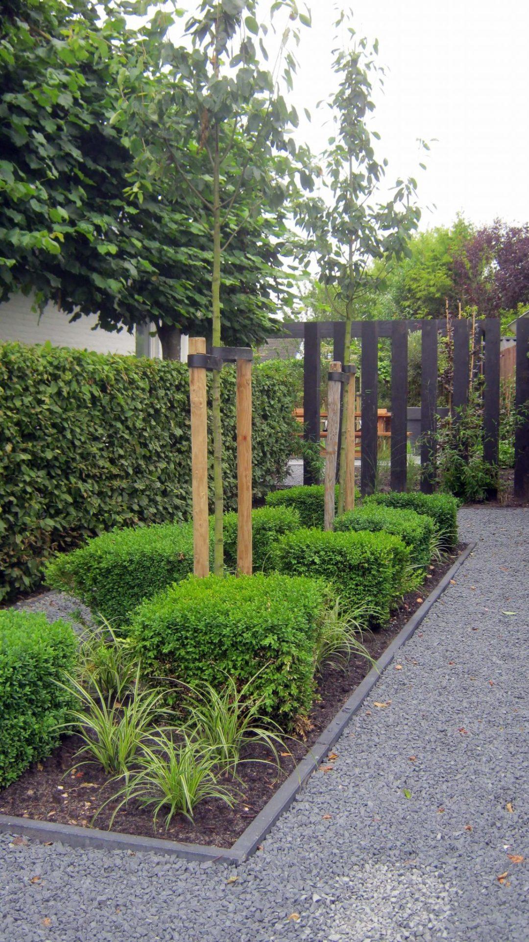 Moderne tuin Sneek