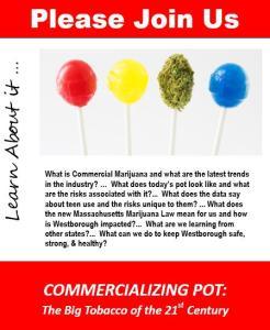 Opt Out Marijuana Massachusetts Westborough Guide