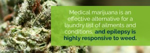 Attitudes and knowledge about cannabis and cannabis-based therapies among US neurologists, nurses, and pharmacists