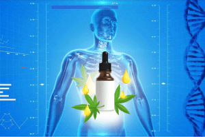 7 Ways CBD Charges Our Body