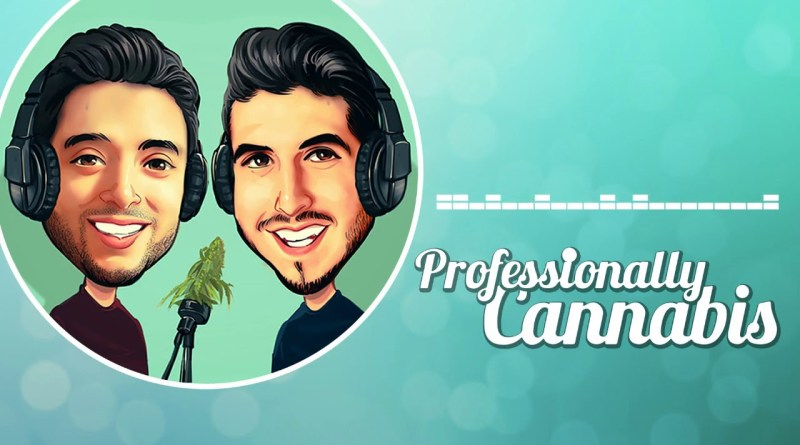 Professionally Cannabis Podcast (Ep.9) – Zeta Ceti, CEO of Greenrush Consulting