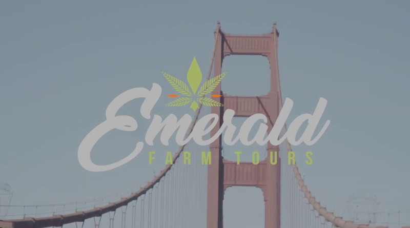 America's Best Cannabis Grow Tours | All-Inclusive Overnight California Weed Farm Tour Mendocino, CA