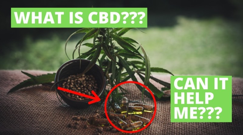 What Are The Benefits of CBD Oil And Can It Help Me?