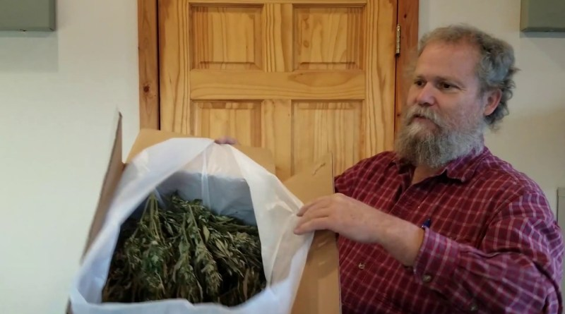 Azure Standard offers organic dried hemp flowers for making CBD products at home