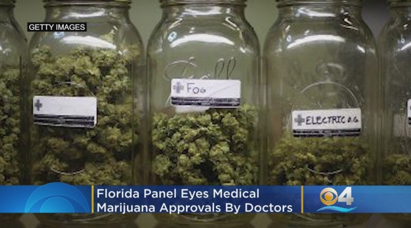 Florida Panel Eyes Medical Marijuana Approvals By Doctors
