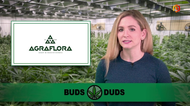 Buds & Duds: Cannabis stocks show little excitement; AgraFlora jumps on UK drug license